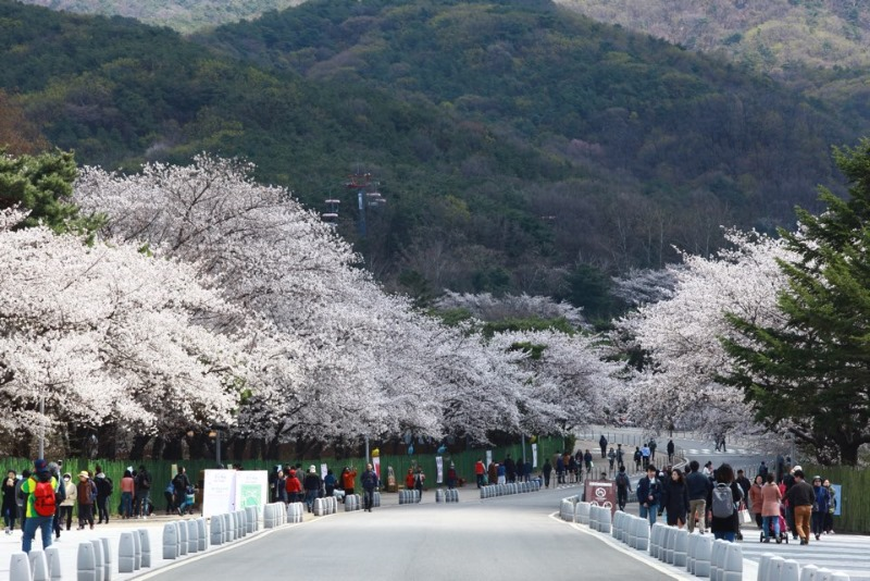 서울대공원.JPG